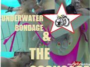 HornyRoxy – Underwater Bondage & The CockCage