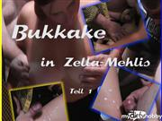 Susi-Deluxe – Geile Anspritzparty! Teil 1